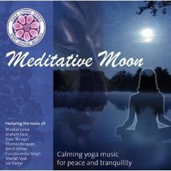 Meditative Moon - various artists